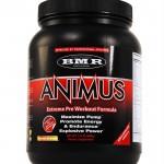 Animus – När du väl testat den vill inte vara utan den!