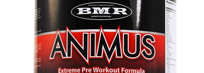 Animus en PWO från BMR